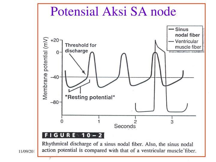 Potensial Aksi SA node