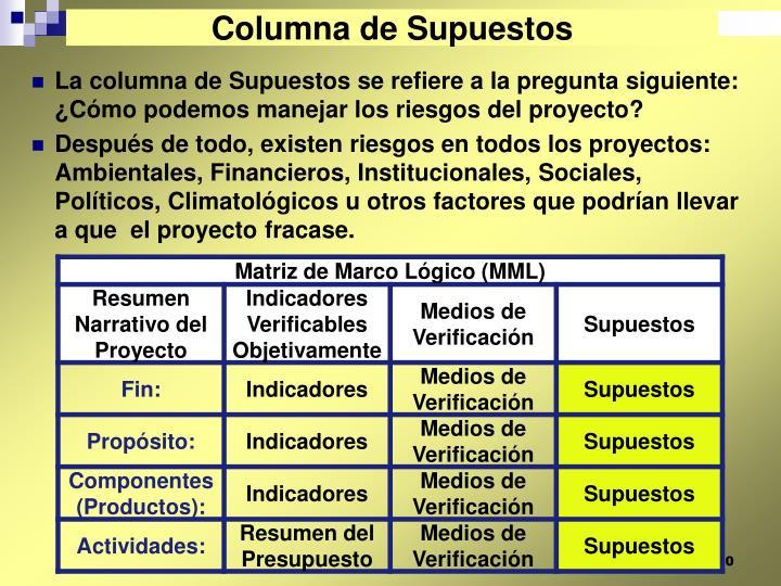 Columna de Supuestos