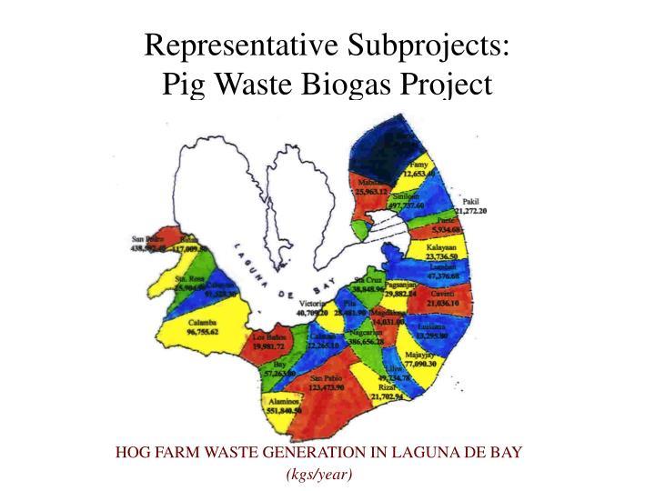 Representative Subprojects:
