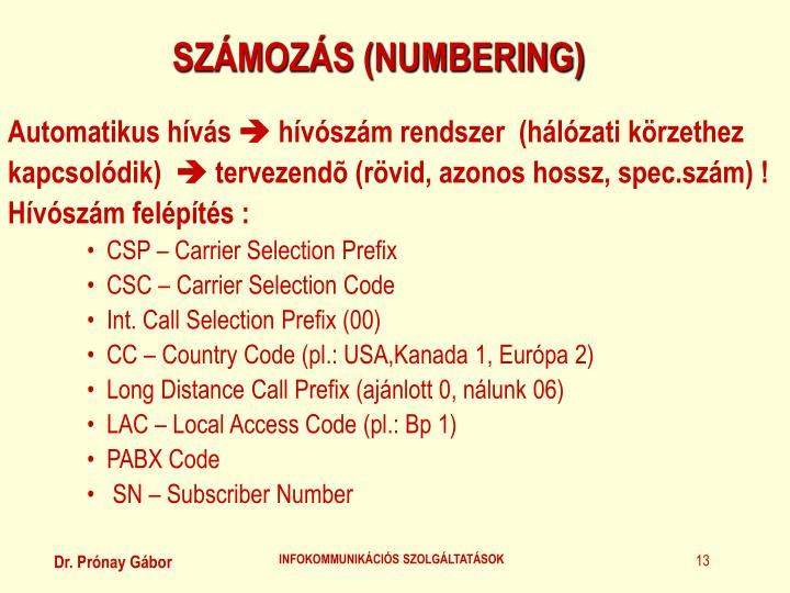 SZÁMOZÁS (NUMBERING)