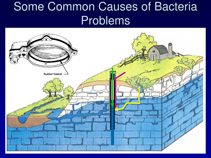 Some Common Causes of Bacteria Problems