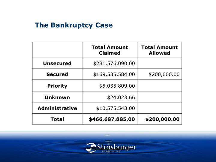 The Bankruptcy Case