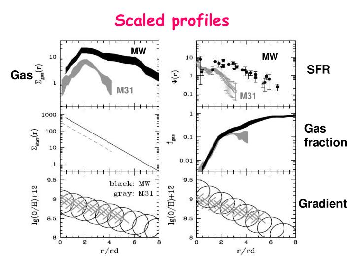 Scaled profiles