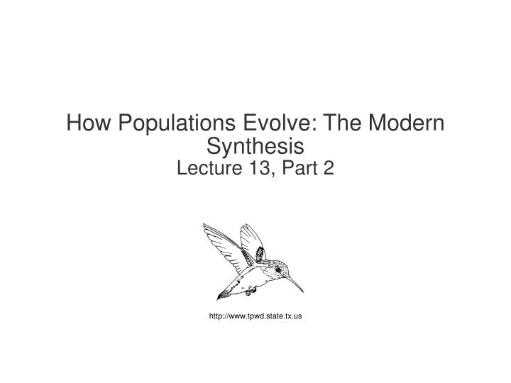 How Populations Evolve: The Modern Synthesis