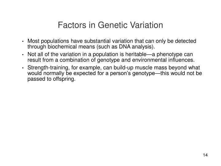 Factors in Genetic Variation