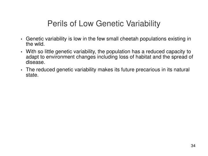 Perils of Low Genetic Variability