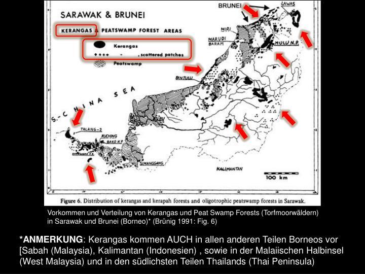 Vorkommen und Verteilung von Kerangas und Peat Swamp Forests (Torfmoorwäldern) in Sarawak und Brunei (Borneo)* (Brünig 1991: Fig. 6)