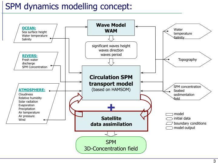 SPM dynamics