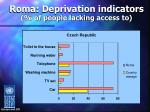 roma deprivation indicators of people lacking access to