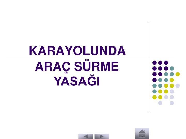 KARAYOLUNDA