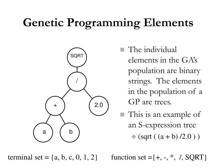 Genetic Programming Elements