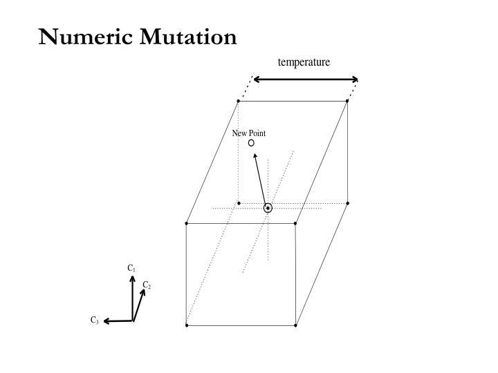 Numeric Mutation