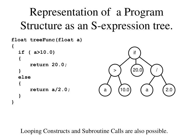 Representation of  a Program Structure as an S-expression tree.