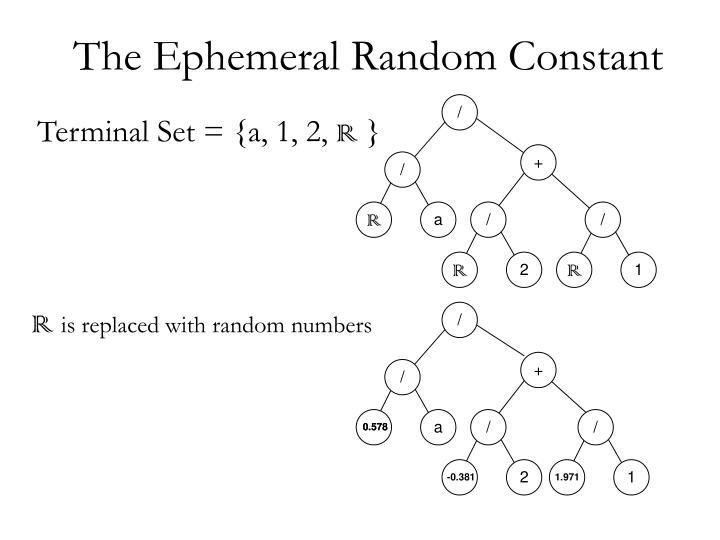 The Ephemeral Random Constant