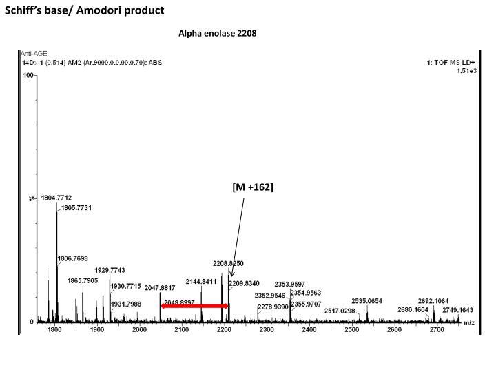 Schiff's base/ Amodori product