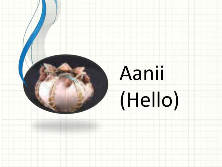 Aanii (Hello)