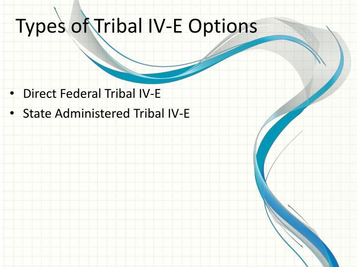 Types of Tribal IV-E Options