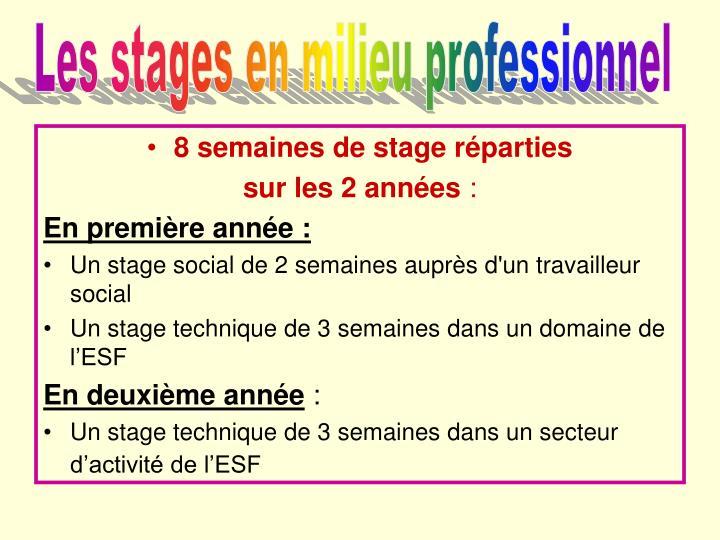 Les stages en milieu professionnel