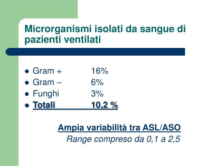 Microrganismi isolati da sangue di pazienti ventilati