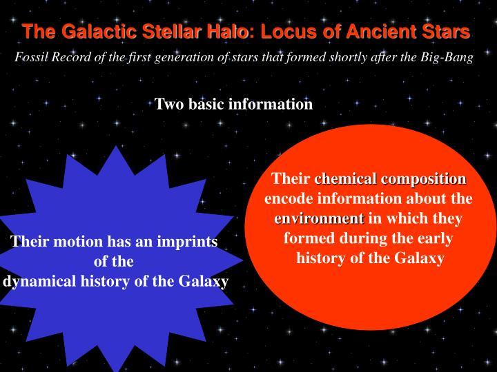 The Galactic Stellar Halo