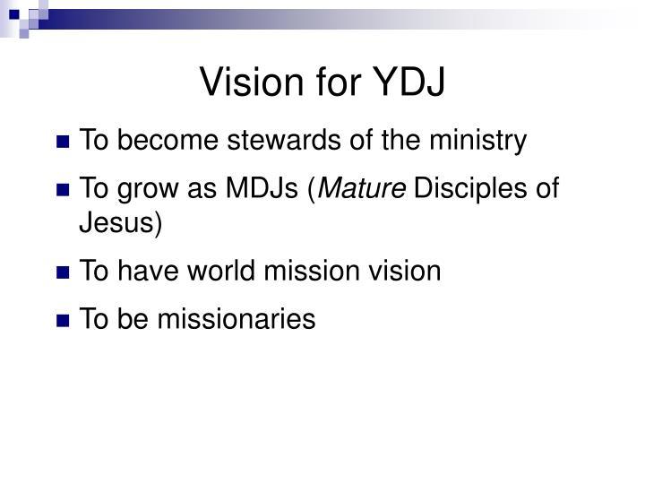 Vision for YDJ