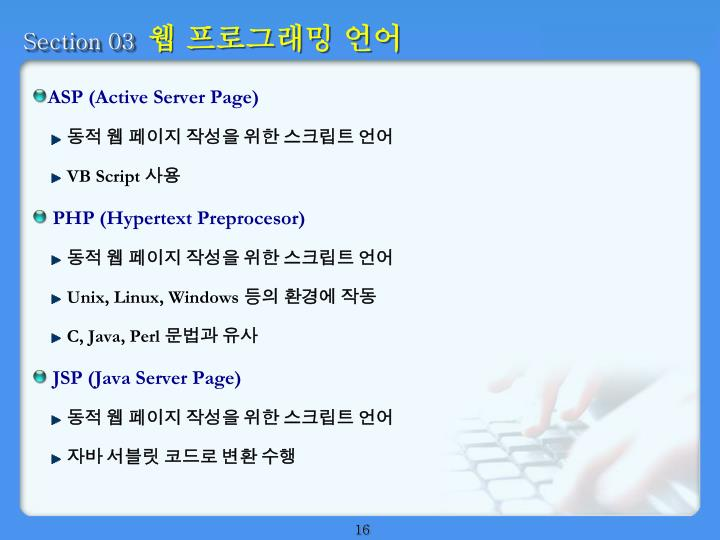 ASP (Active Server Page)