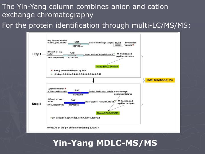 The Yin-Yang column combines anion and cation