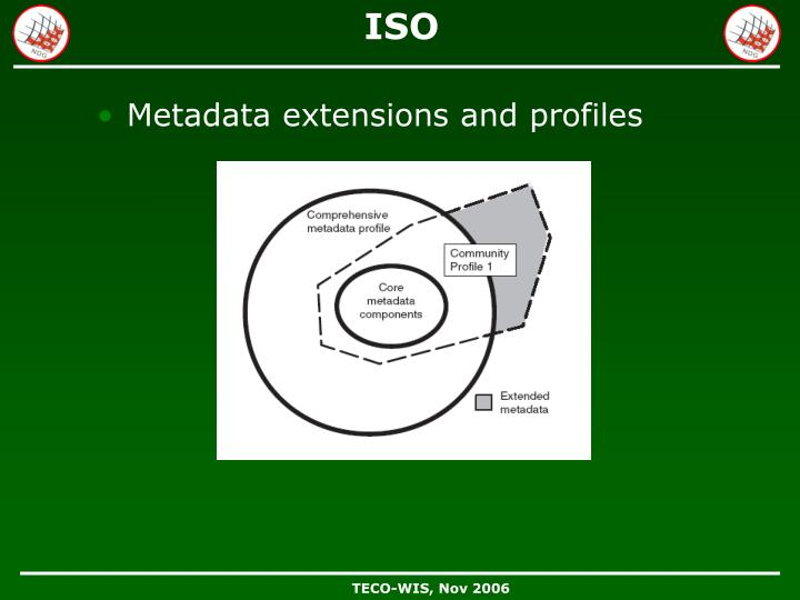 Metadata extensions and profiles