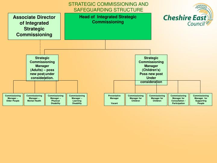 STRATEGIC COMMISSIONING AND SAFEGUARDING STRUCTURE