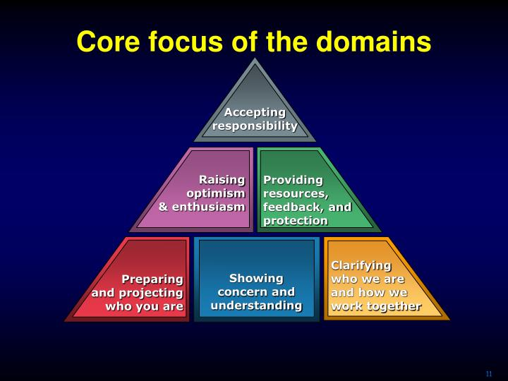 Core focus of the domains
