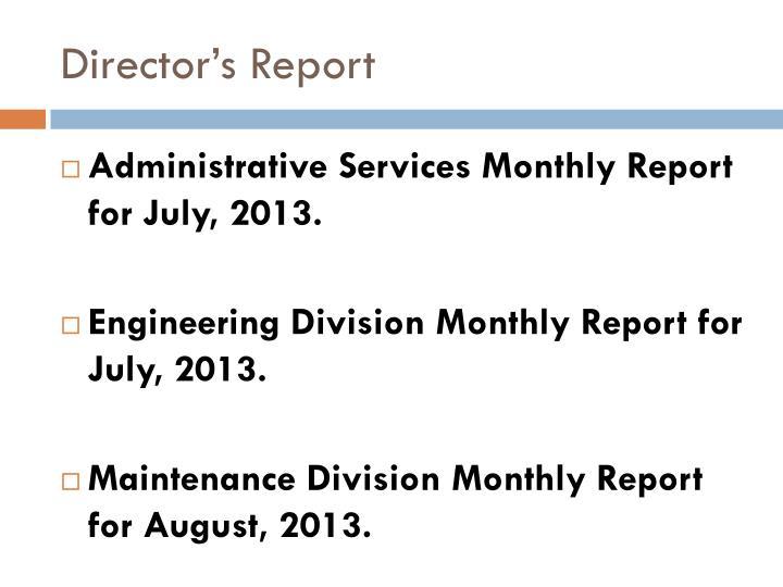 Director s report
