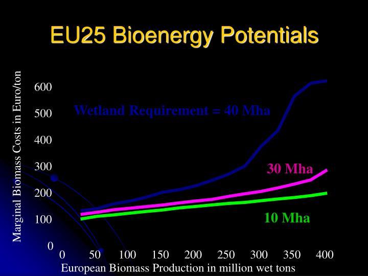EU25 Bioenergy Potentials