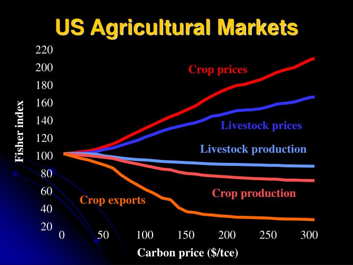 US Agricultural Markets