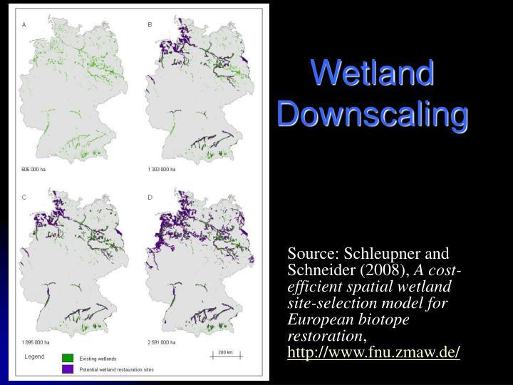 Wetland Downscaling