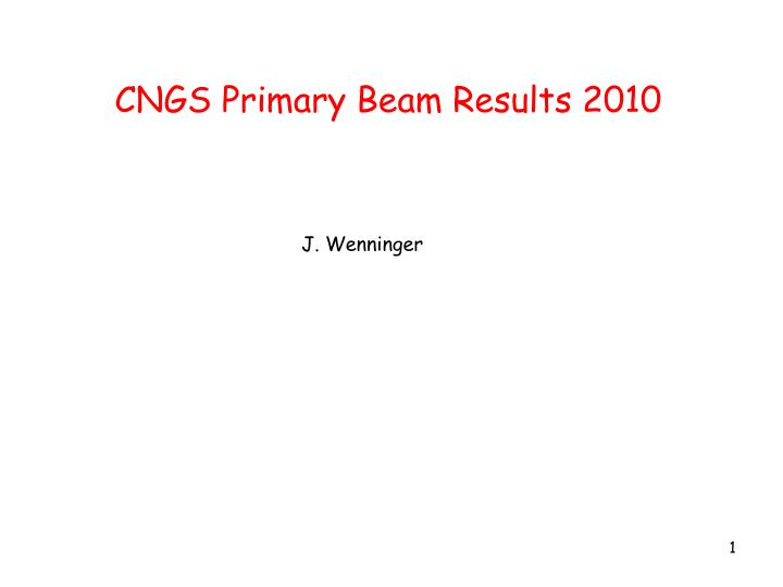 CNGS Primary Beam Results 2010