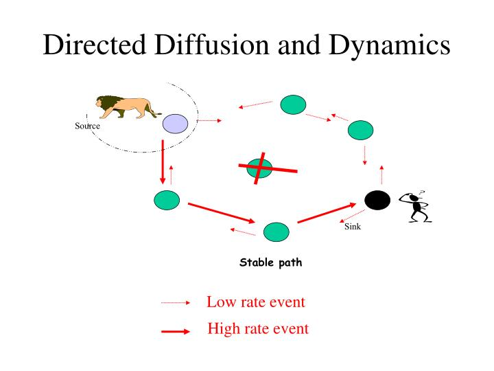 Directed Diffusion and Dynamics