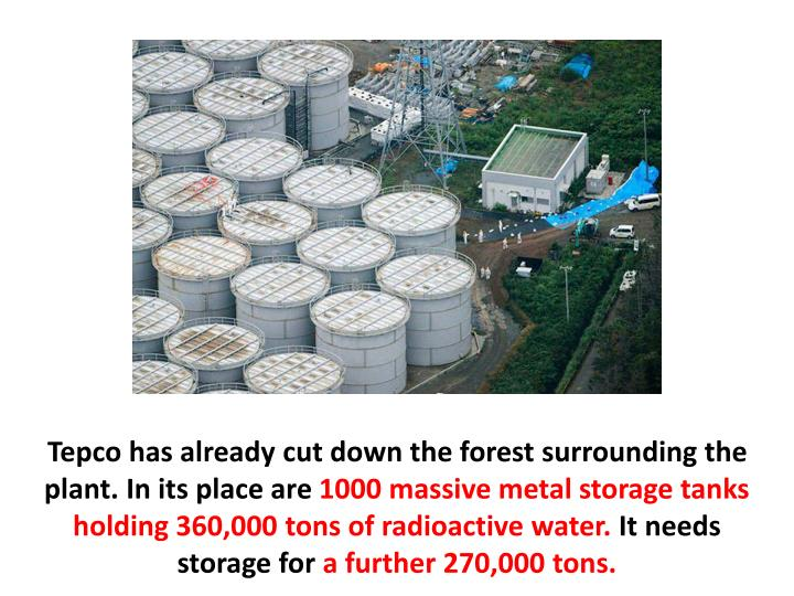 Tepco has already cut down the forest surrounding the plant. In its place are