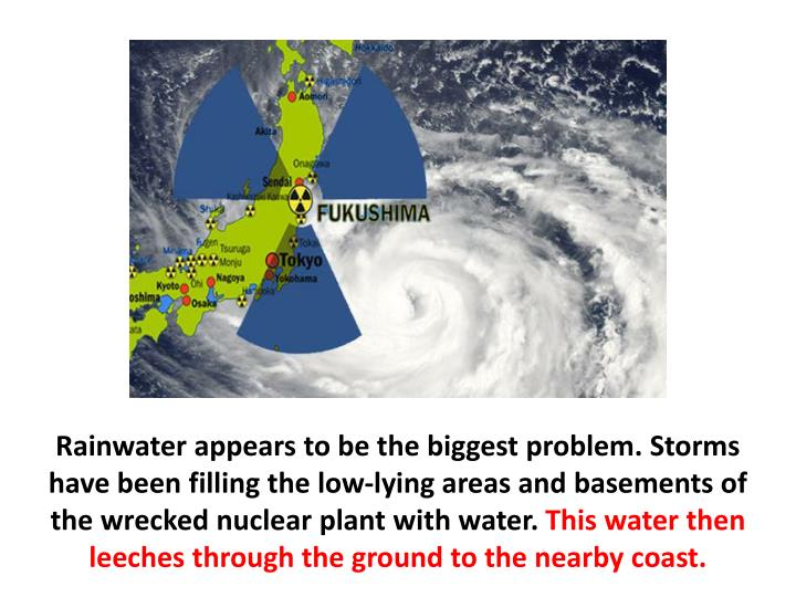 Rainwater appears to be the biggest problem. Storms have been filling the low-lying areas and basements of the wrecked nuclear plant with water.