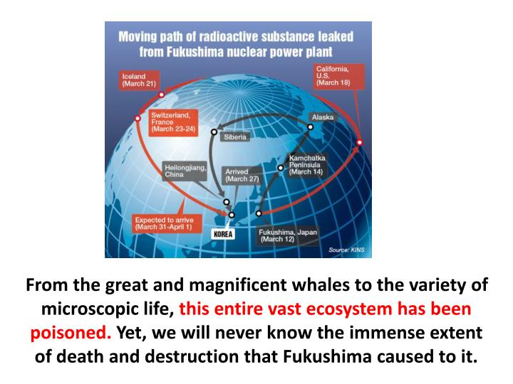 From the great and magnificent whales to the variety of microscopic life,