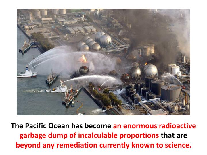 The Pacific Ocean has become