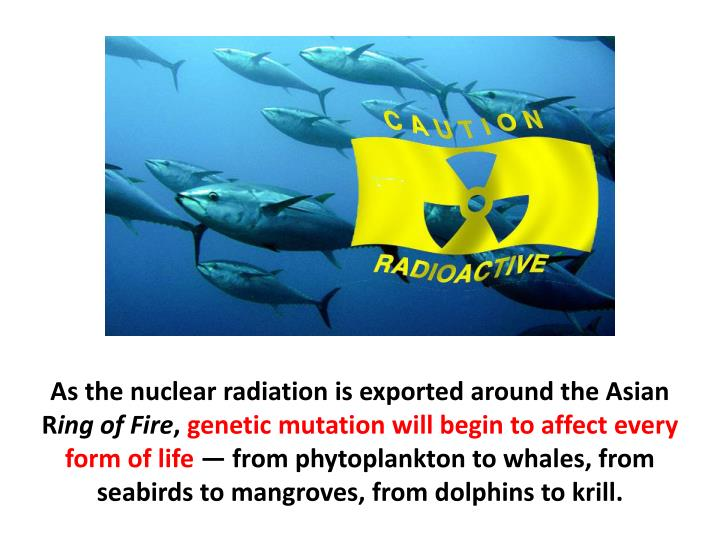 As the nuclear radiation is exported around the Asian R