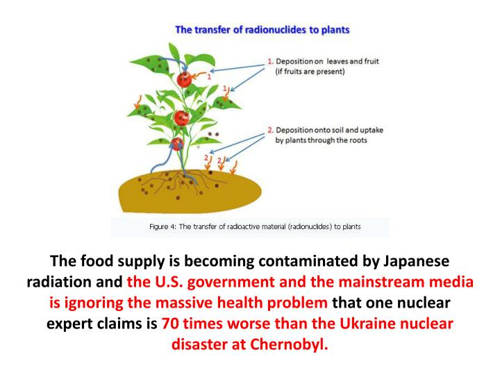 The food supply is becoming contaminated by Japanese radiation and