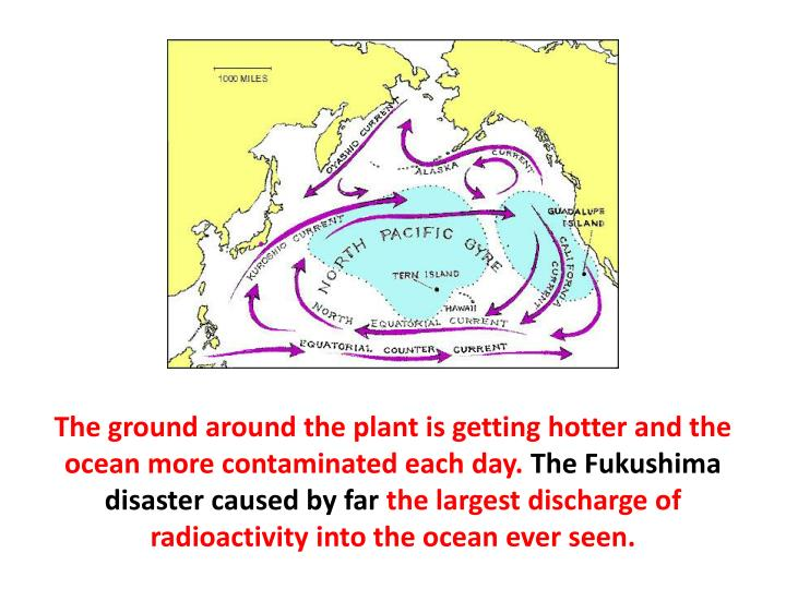 The ground around the plant is getting hotter and the ocean more contaminated each day.