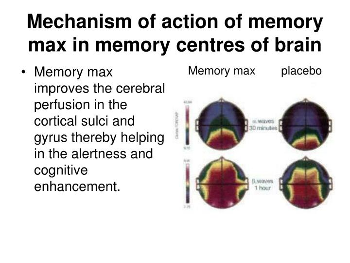 Memory max improves the cerebral perfusion in the cortical sulci and gyrus thereby helping in the alertness and cognitive enhancement.