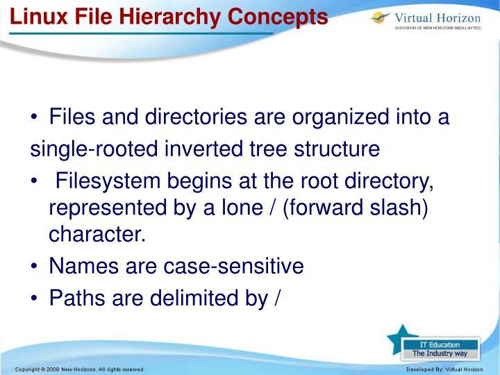 Linux File Hierarchy Concepts