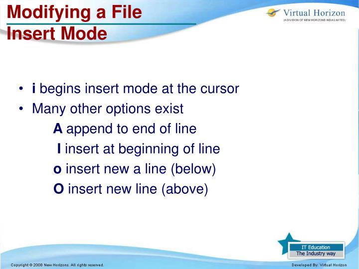 Modifying a File