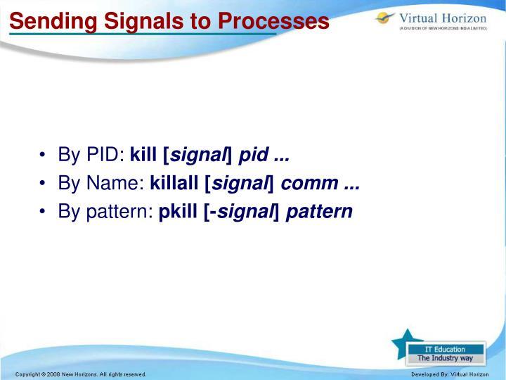 Sending Signals to Processes