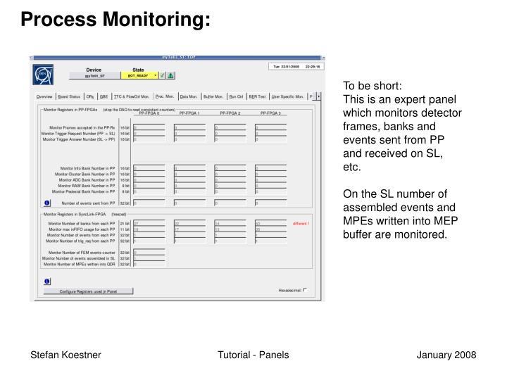 Process Monitoring: