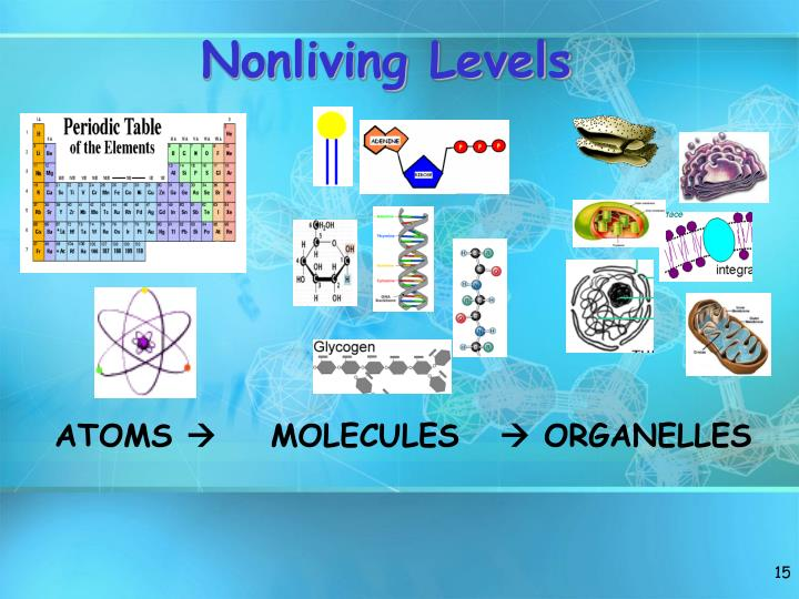 Nonliving Levels