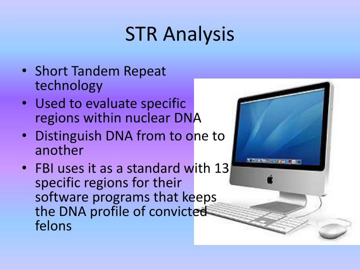 STR Analysis